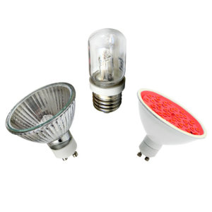 Easy Connect Replacement Lamps