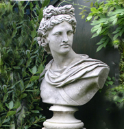 Apollo Belvedere Classical Bust