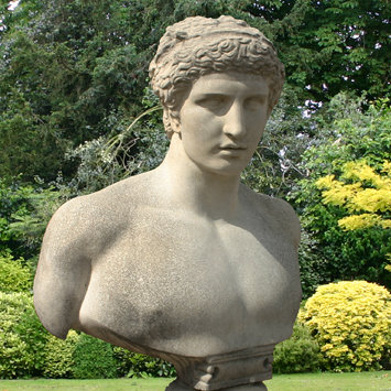 Antinous Classical Bust