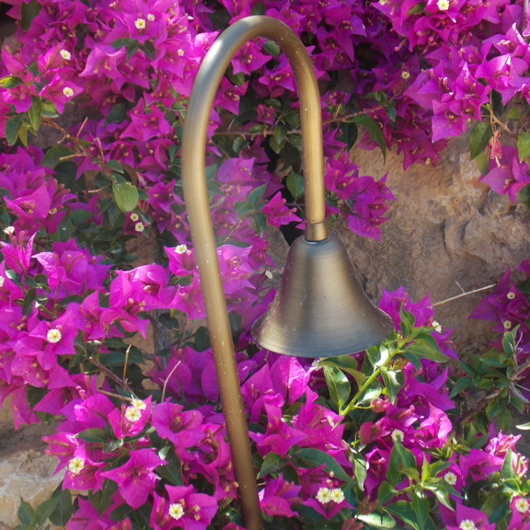 12v Brass Flora Adjustable Spread Light